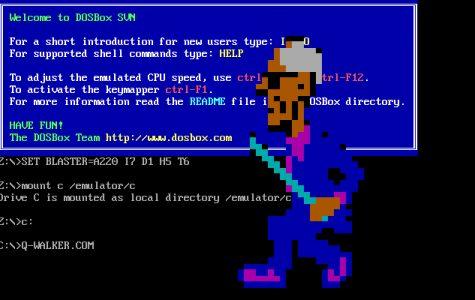 The retro virus