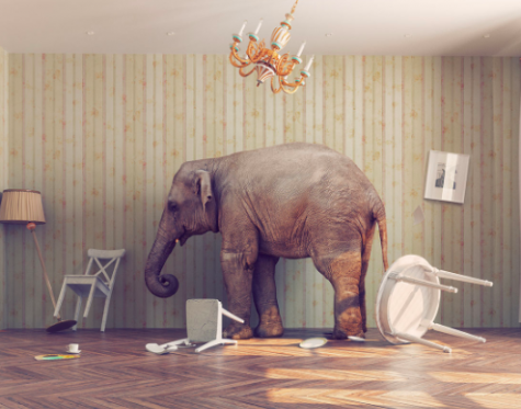 The Elephant in the Lunchroom